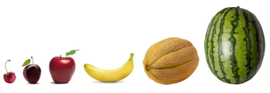 Agile-sizing-fruit-comparison